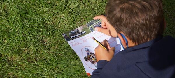 team building on school sites